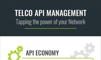 Choosing the Right API Strategy for Telcos [INFOGRAPHIC]